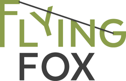 Flying Fox in Morschach